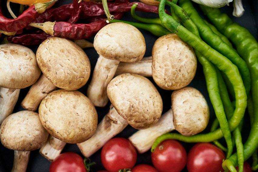 чем заменить мясо в питании детей