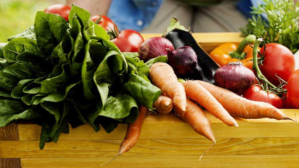 энтеральное питание для детей с дцп