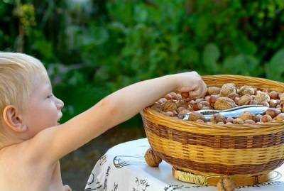 грецкие орехи в питании детей