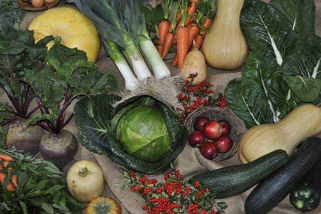 как наладить питание у детей
