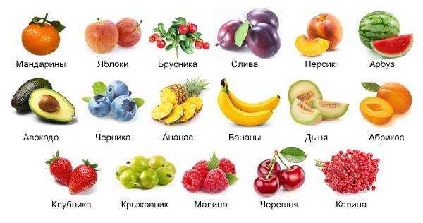 лечебное питание 5п для детей