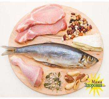 норма белка в питании у взрослых и детей
