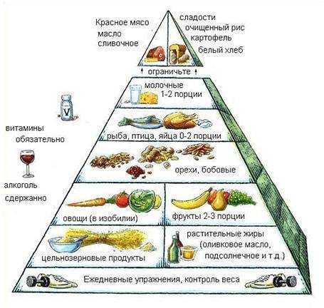пирамида питания пищевая пирамида для детей