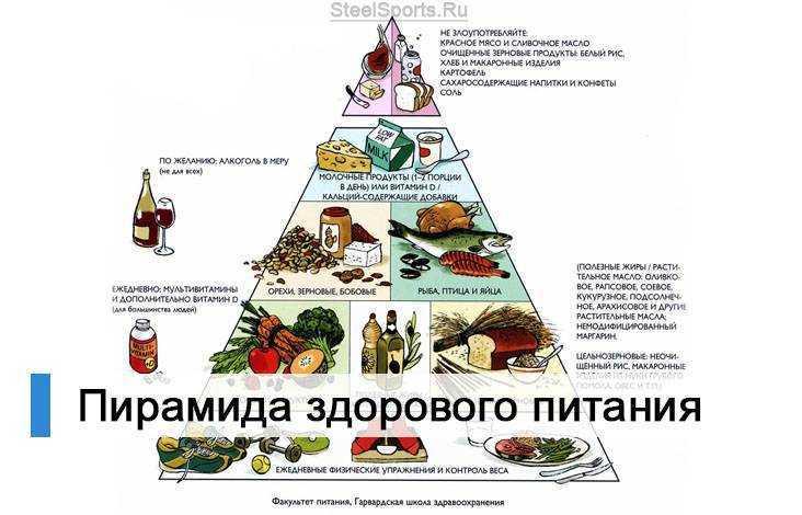 пирамида здорового питания для детей