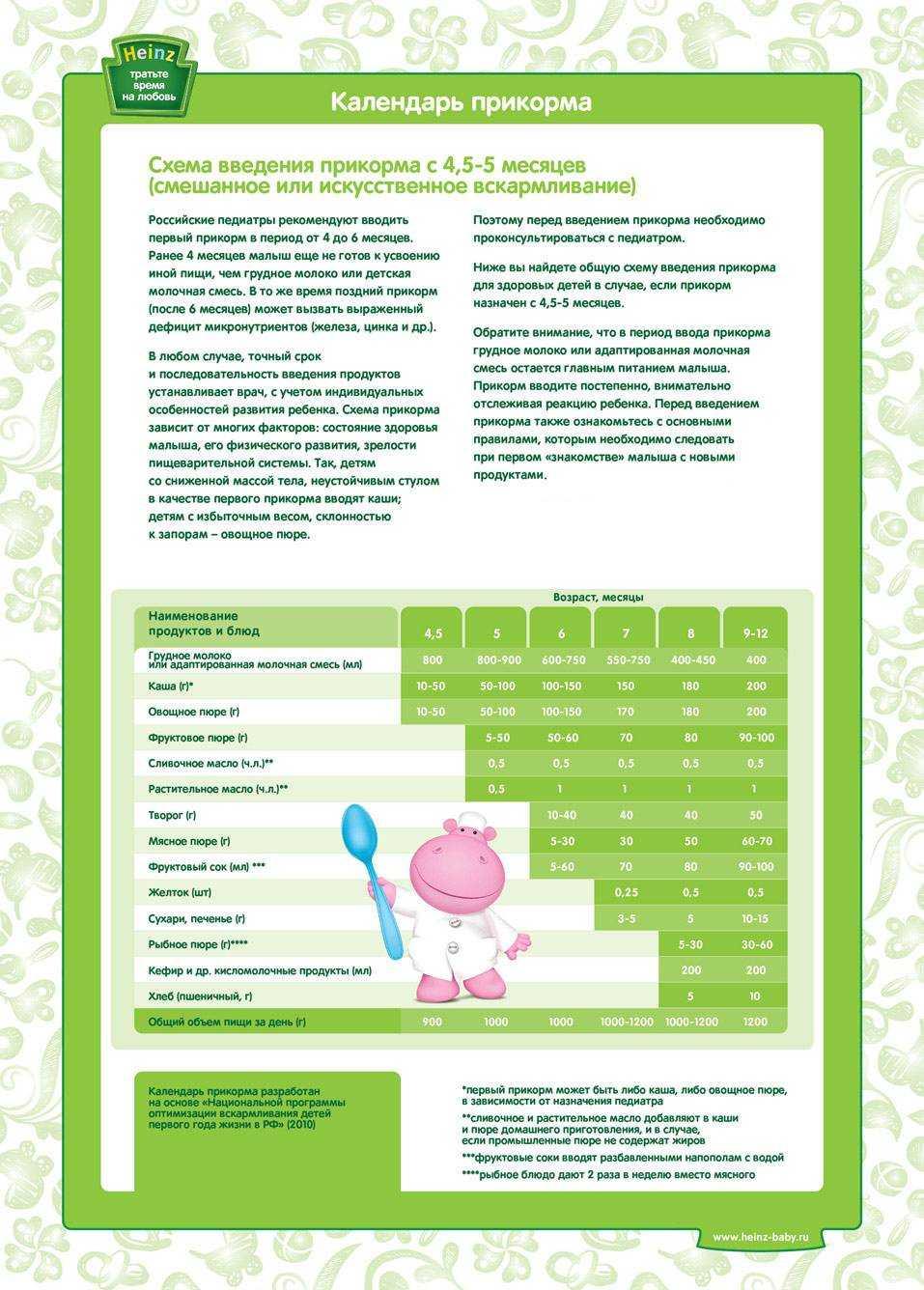 питание детей в 6 месяцев при грудном вскармливании