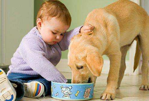 питание при энтеробиозе у детей