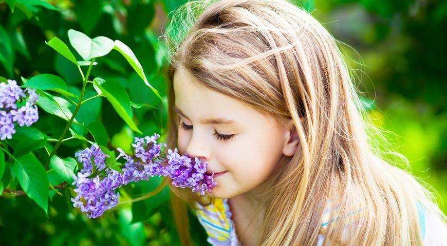 питание при поллинозе у детей