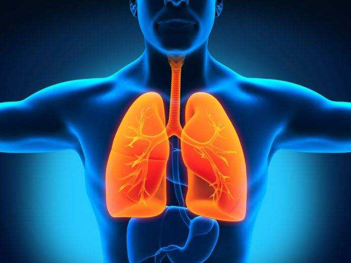 питание при туберкулезе у детей