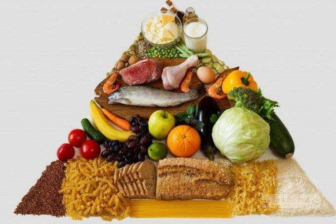 принципы правильного питания для детей