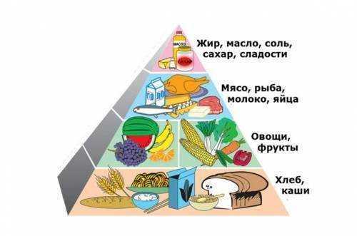 рациональное питание детей школьного возраста