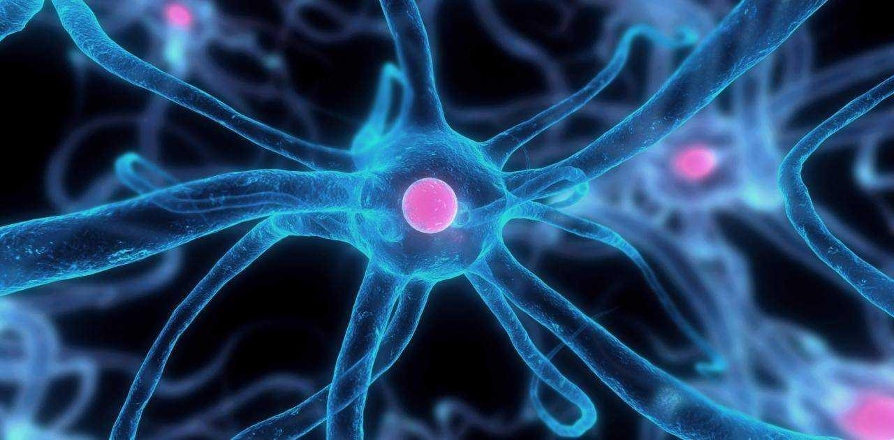питание нервной системы детей