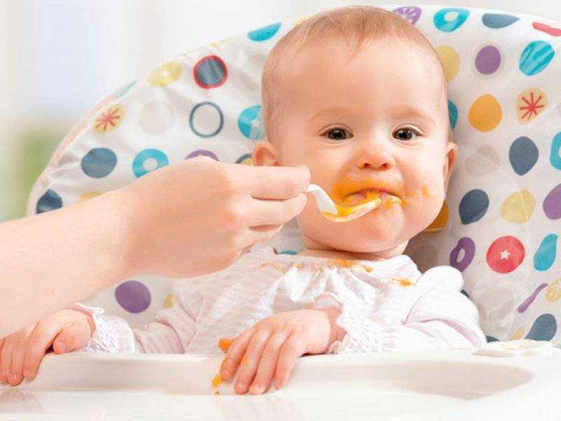 схема питания детей 6 месяцев