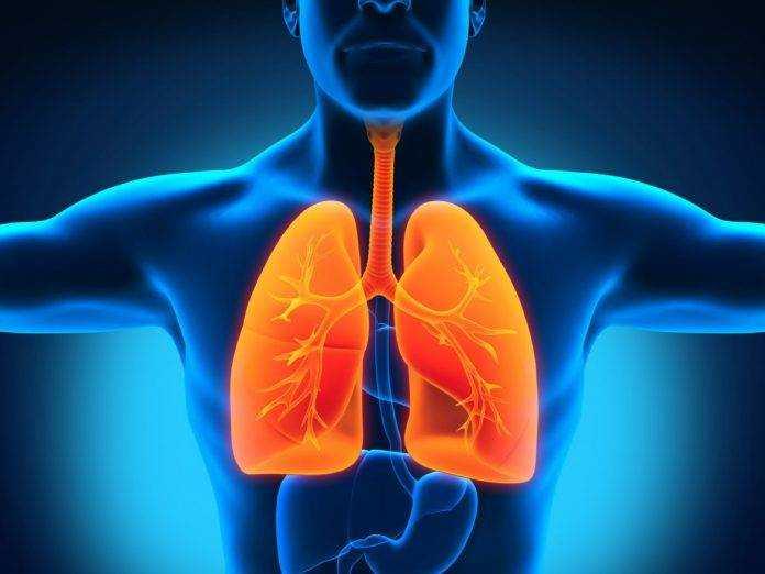 туберкулез у детей питание