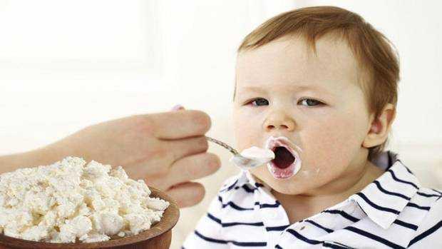 творог в питании детей