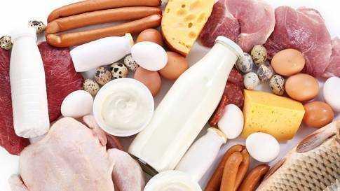 вегетарианское питание для детей за и против