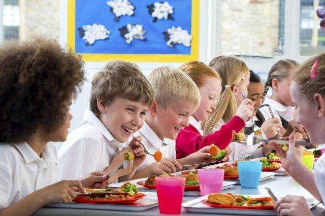 гигиенические требования к питанию детей в школьных учреждениях