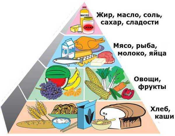 консультация для родителей питание детей в выходные дни